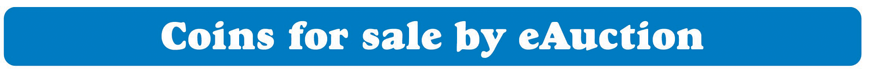 eauction-banner